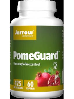 PomeGuard – Pomegranate...